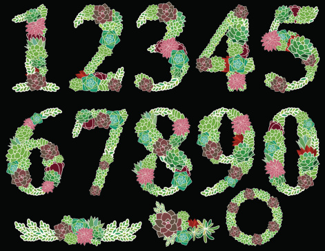 Numbers one to zero Succulent garden