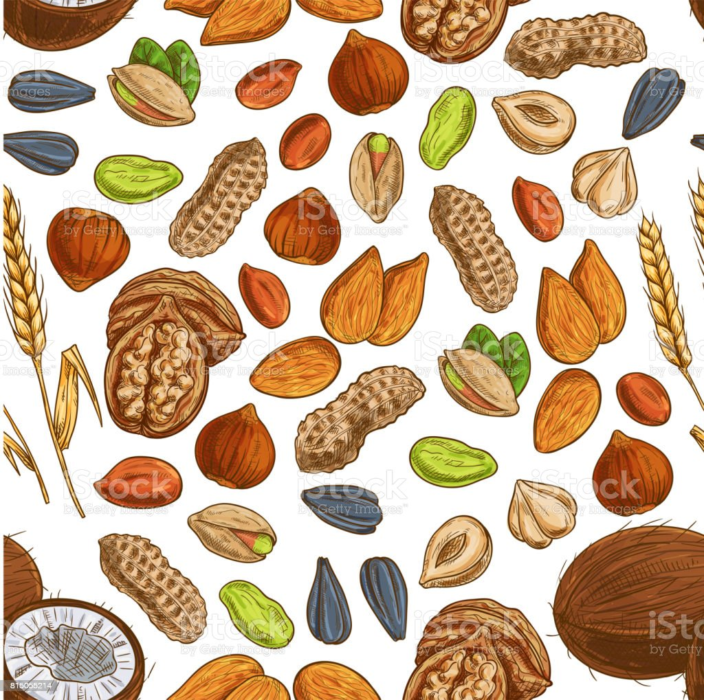 Nut Bean Seed And Wheat Seamless Pattern Stock Vector Art & More ...
