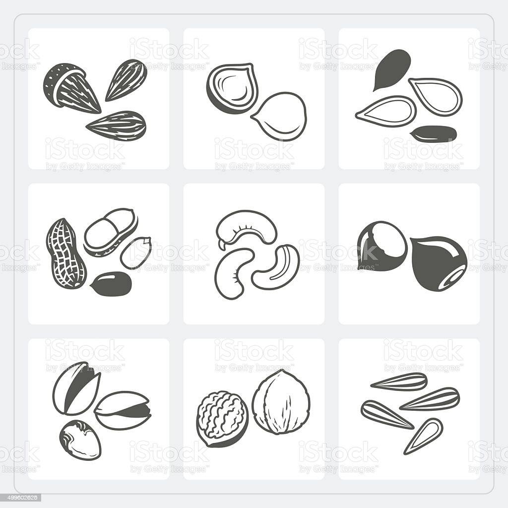 Nut icons set vector art illustration