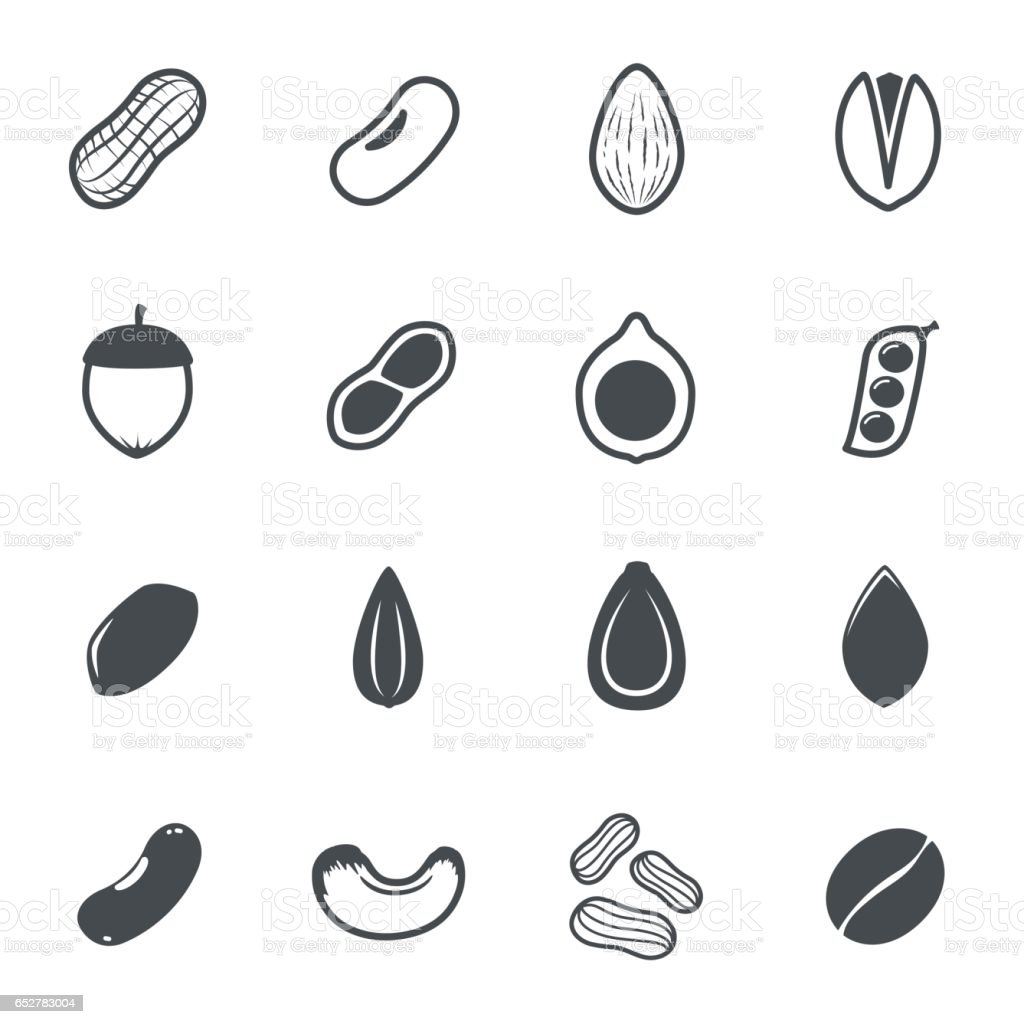 Nut icons. Vector illustration. vector art illustration