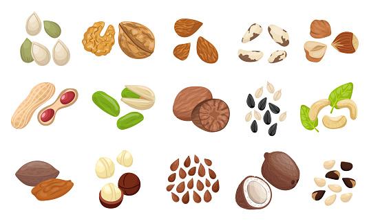 Nut seed set. Slices nuts pistachio peanuts brazilian hazelnut pumpkin seeds sunflower.