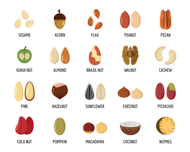 nut types with signed names icons set, flat style - nuts stock illustrations