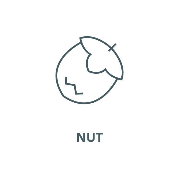 nuss-vektorlinie, lineares konzept, umrisszeichen, symbol - zeichensetzung stock-grafiken, -clipart, -cartoons und -symbole