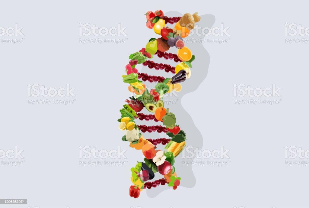 Nutrigenetics concept illustration for DNA strand made from vegetables and fruits. vector art illustration