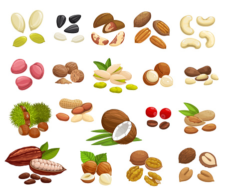 Nuts, beans and seeds of super food