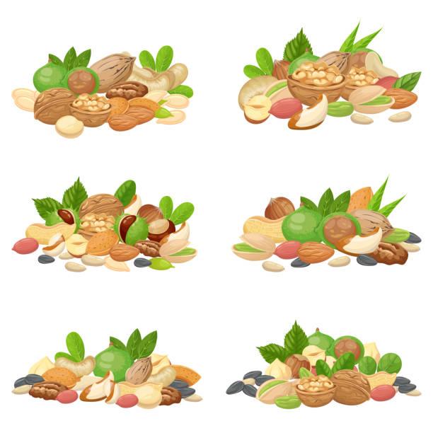 muttern-haufen. kerne der früchte, getrocknete mandel nuss und kochenden samen isoliert vektor-set - nuss stock-grafiken, -clipart, -cartoons und -symbole