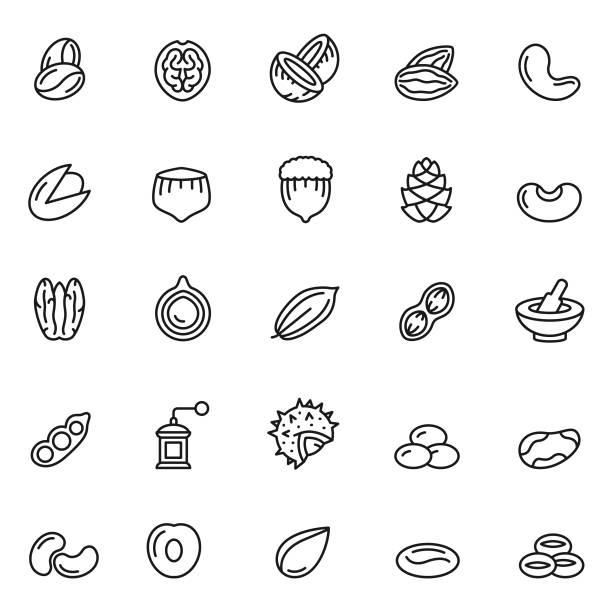 stockillustraties, clipart, cartoons en iconen met moeren icon set - walnoot