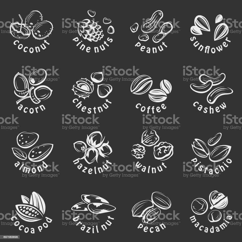 conjunto de ícones de nozes - ilustração de arte em vetor