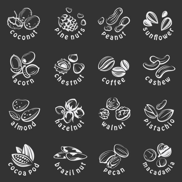 muttern icons set - nuss stock-grafiken, -clipart, -cartoons und -symbole