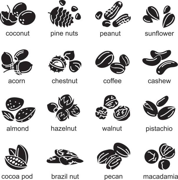 nuts icons set - nuts stock illustrations