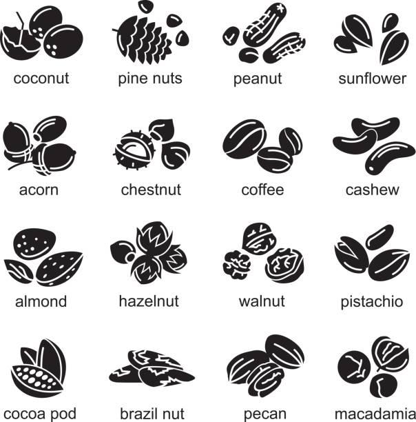 너트 아이콘 세트 - nuts stock illustrations