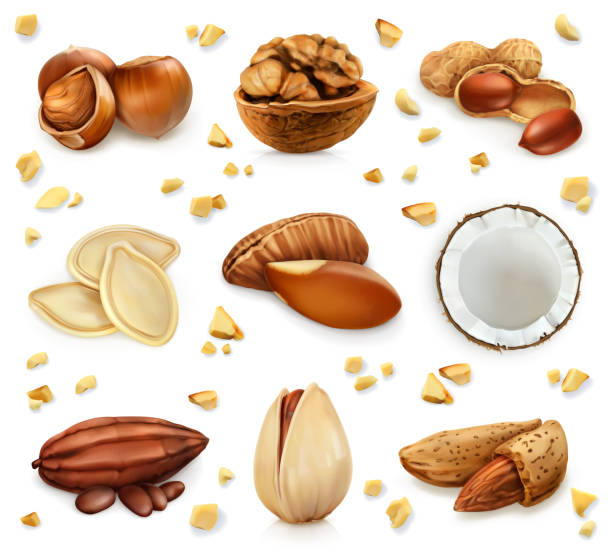 nuts in the shell, vector icon set - nuts stock illustrations