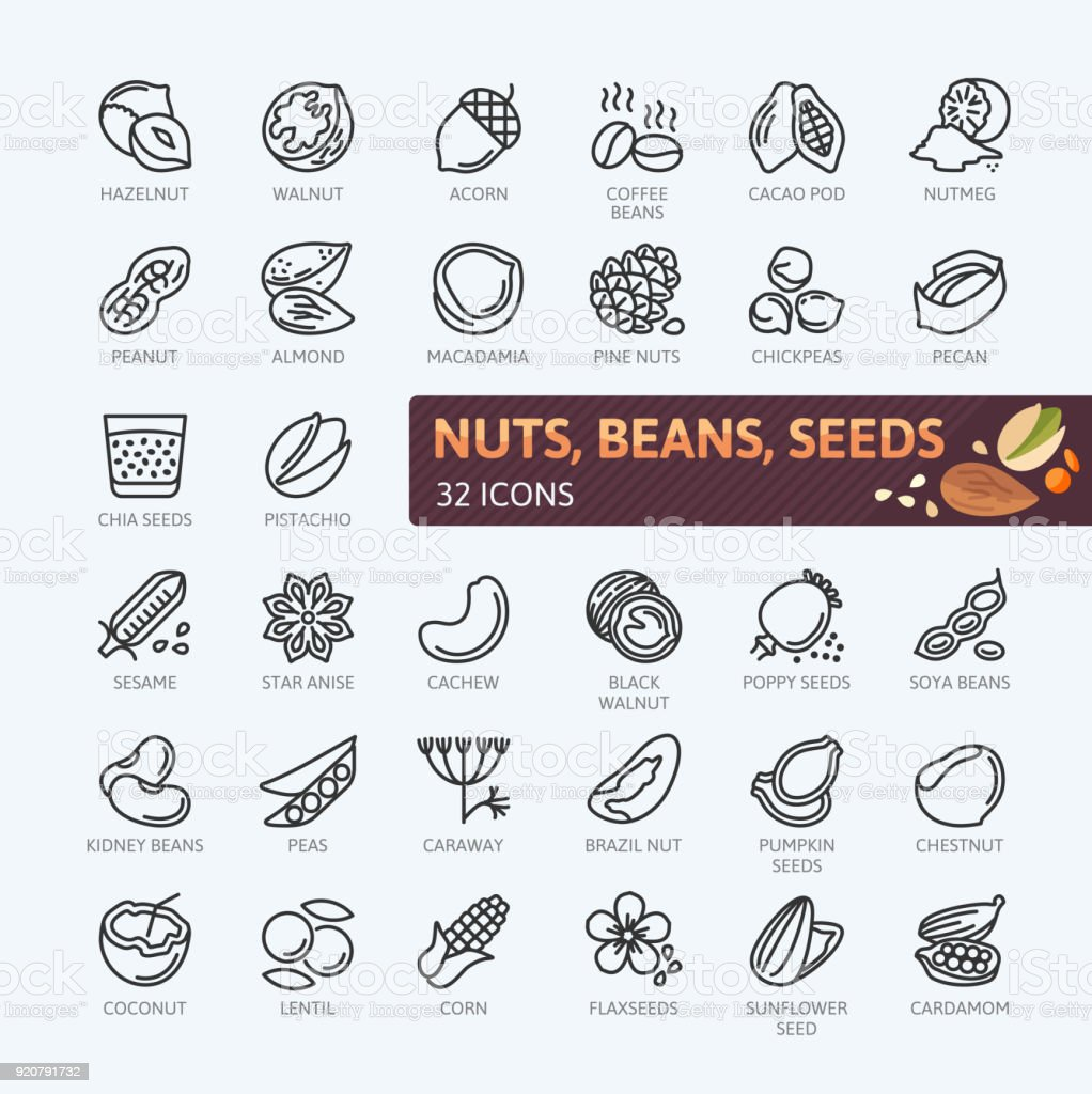 Nuts, seeds and beans elements - simple vector icon collection. royalty-free nuts seeds and beans elements simple vector icon collection stock illustration - download image now