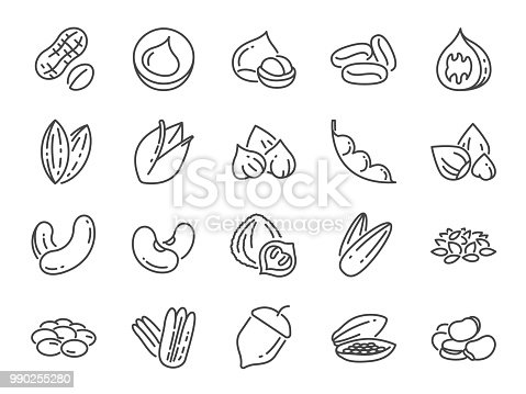 Nuts, seeds and beans icon set. Included icons as basil, thyme, ginger, pepper, parsley, mint and more.