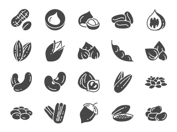 견과류, 씨앗, 콩 아이콘 세트입니다. 호두, 참 깨, 콩, 커피, 아몬드, 피칸 등으로 아이콘을 포함. - nuts stock illustrations