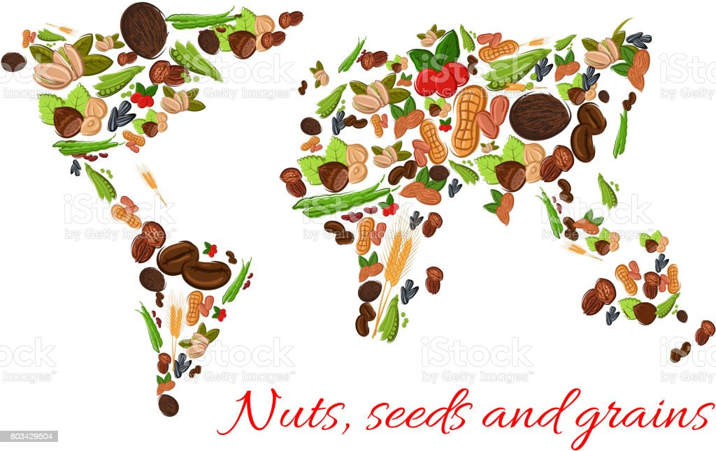 Nuts seeds and grains vector world map stock vector art more nuts seeds and grains vector world map royalty free nuts seeds and grains vector gumiabroncs Choice Image
