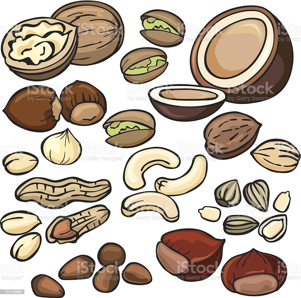 Nuts, seeds icon set royalty-free stock vector art