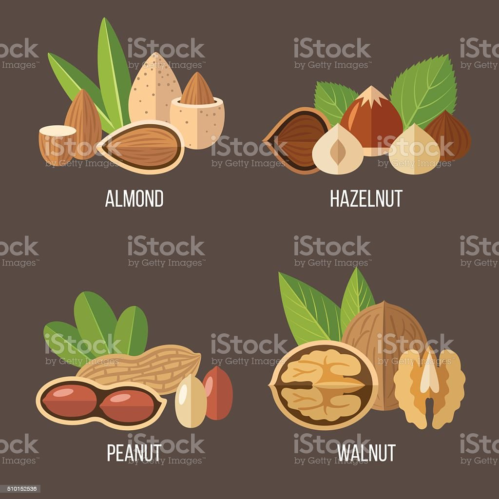 Nuts set vector art illustration