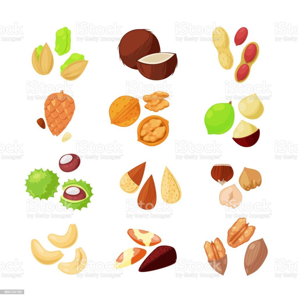 Nuts vector icons. Superfood eating cartoon style illustration nuts vector icons superfood eating cartoon style illustration - stockowe grafiki wektorowe i więcej obrazów dowcip rysunkowy royalty-free