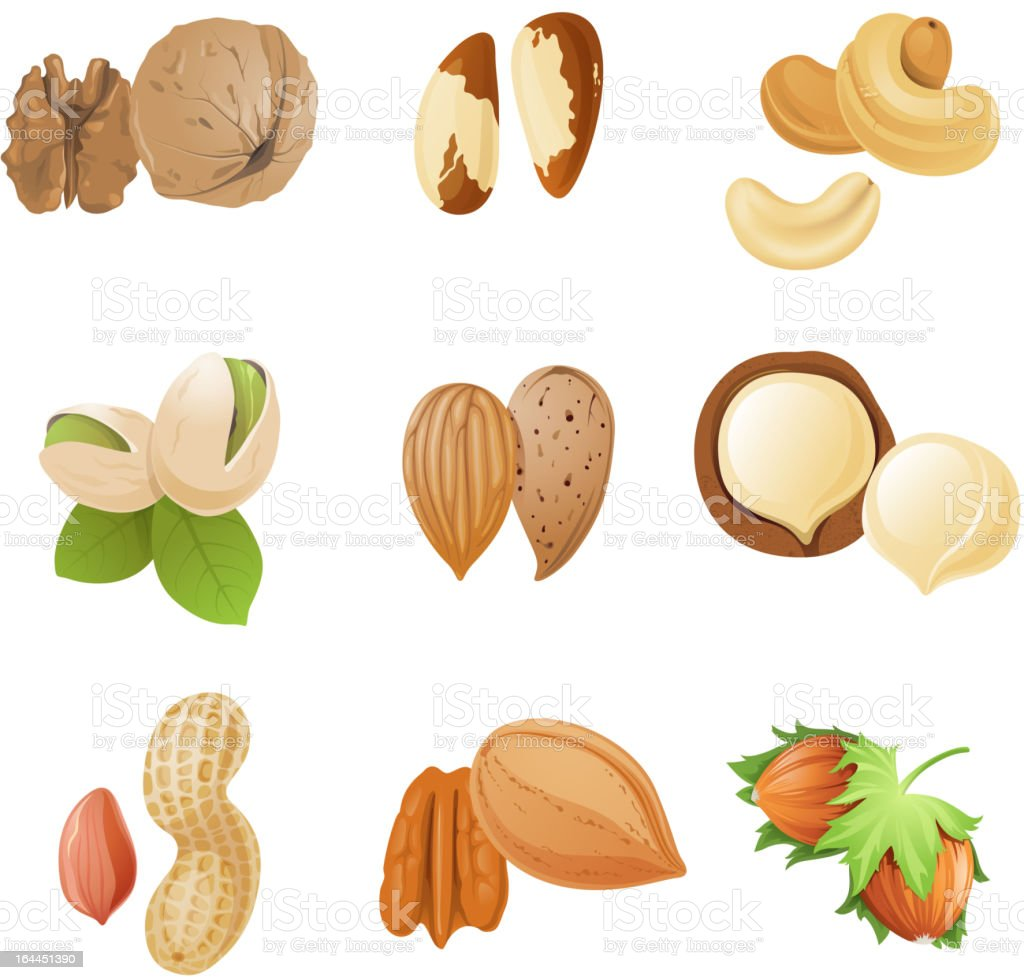 nuts royalty-free stock vector art