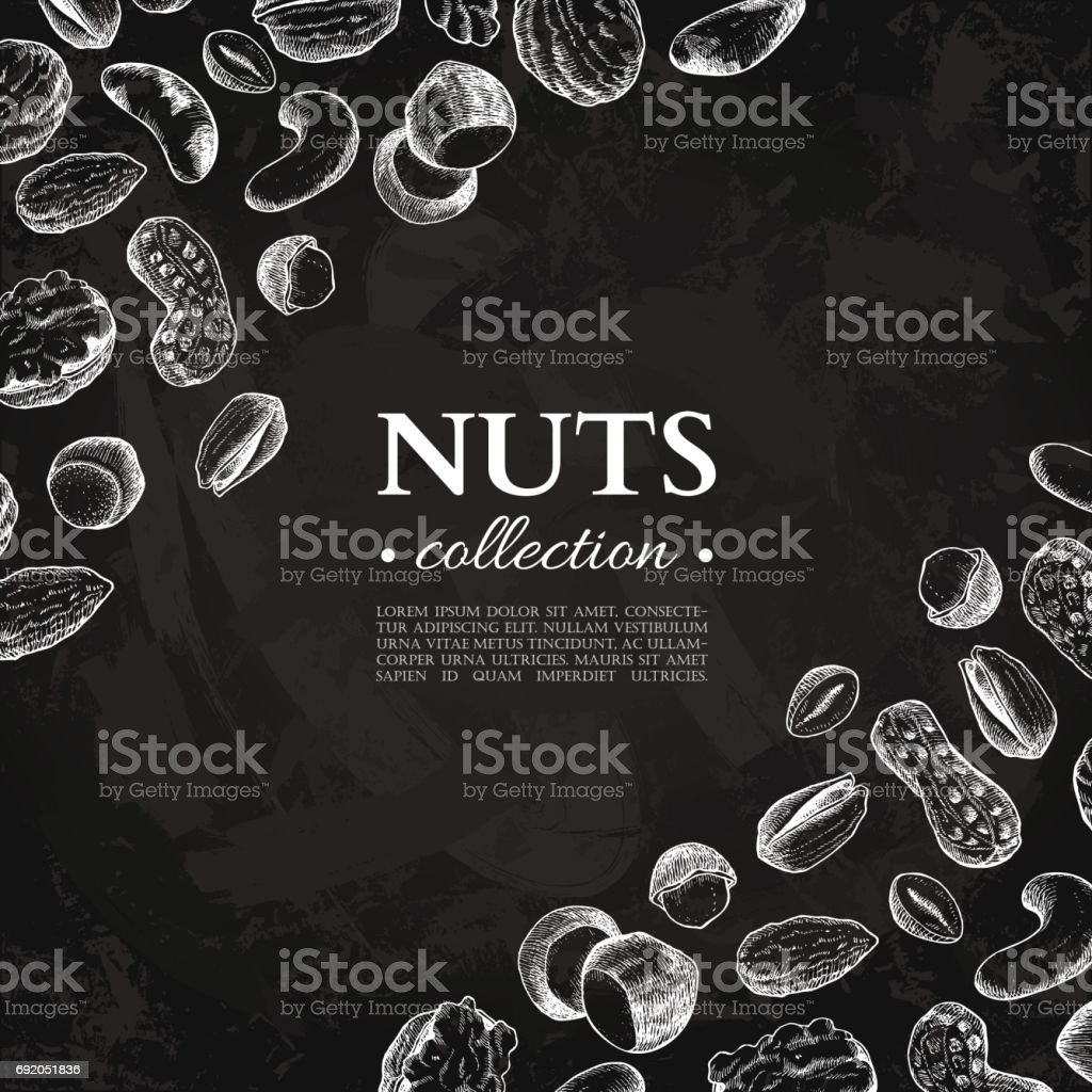 Nuts vector vintage frame illustration. Hand drawn chalkboard food objects vector art illustration