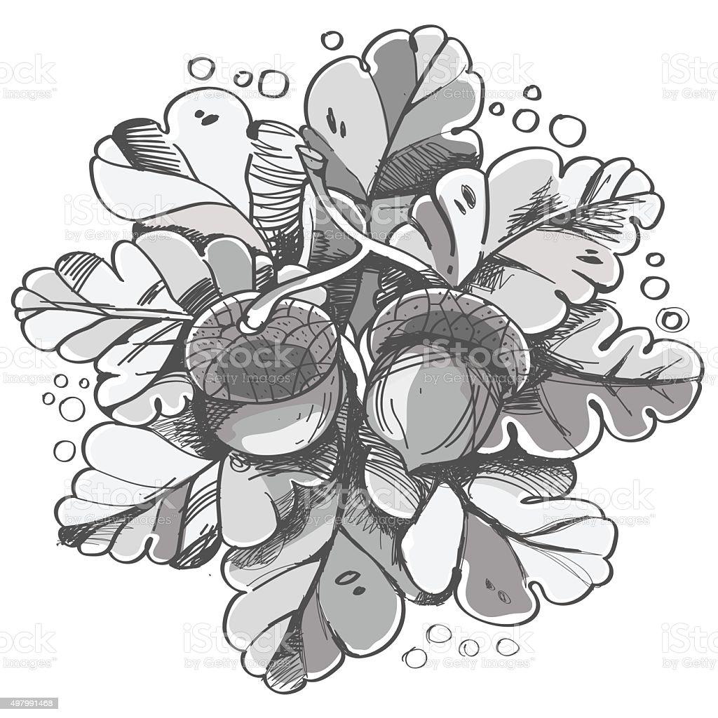 Eiche Blätter Und Selbst Noch Stock Vektor Art Und Mehr
