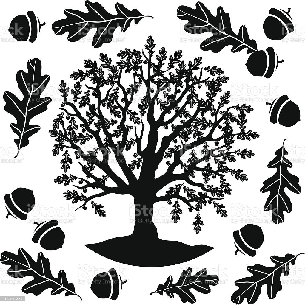 oak tree in black and white royalty-free stock vector art