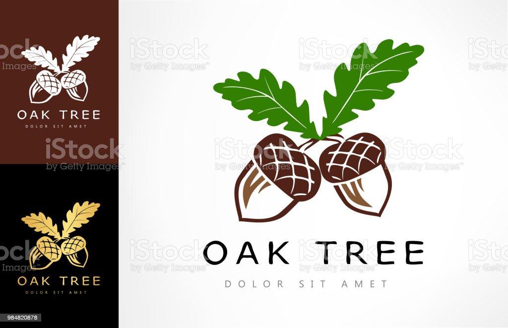 Oak tree logo. Acorn  vector. Oak tree logo. Acorn  vector. Acorn stock vector