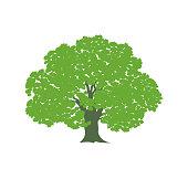 istock Oak tree logo. Isolated oak tree on white background 1203413957
