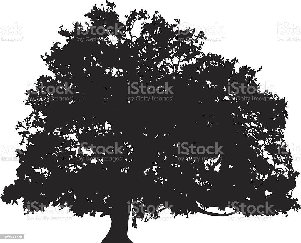 oak tree silhouette vector stock vector art 166011778 istock