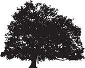 Oak tree silhouette vector