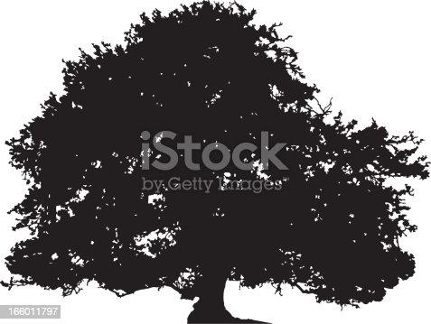 Big Tree Clipart At Getdrawings Com Free For Personal Use Big Tree