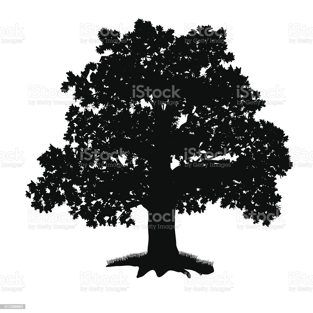 oak tree silhouette with leaves vector art illustration