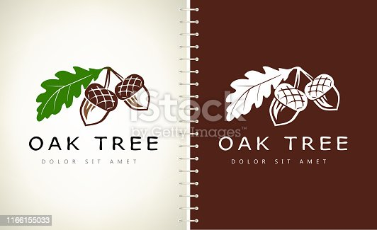 Oak tree symbol. Acorn  vector.