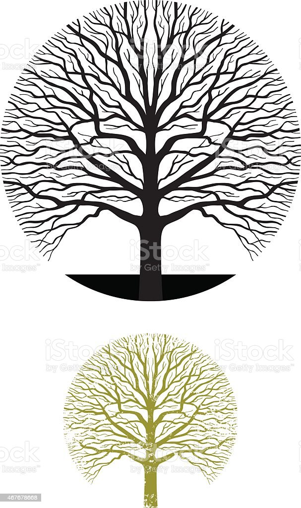 the oak tree a symbol for Get an answer for 'how does the symbol of a tree represent melinda's growth and experiences ' and find homework help for other speak questions at enotes.