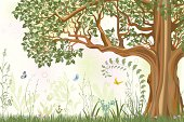 Summer background with oak tree in a meadow