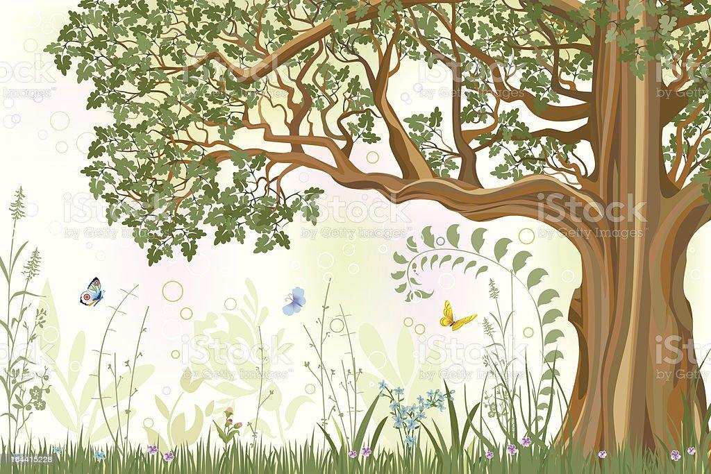 Oak tree vector art illustration