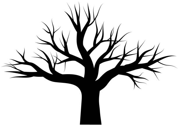 Oak tree with no leaves black vector vector art illustration