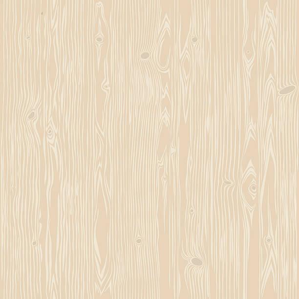 drewno dębowe bielone bezszwowe tekstura płótna - drewno tworzywo stock illustrations