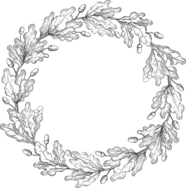 Oak wreath Vector Decorative element with oak branches at engraving style. oak leaf stock illustrations