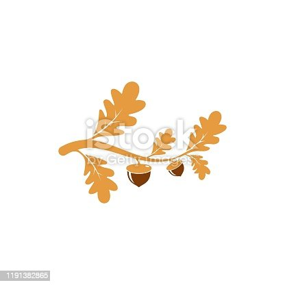 Oak.branch vector illustration concept