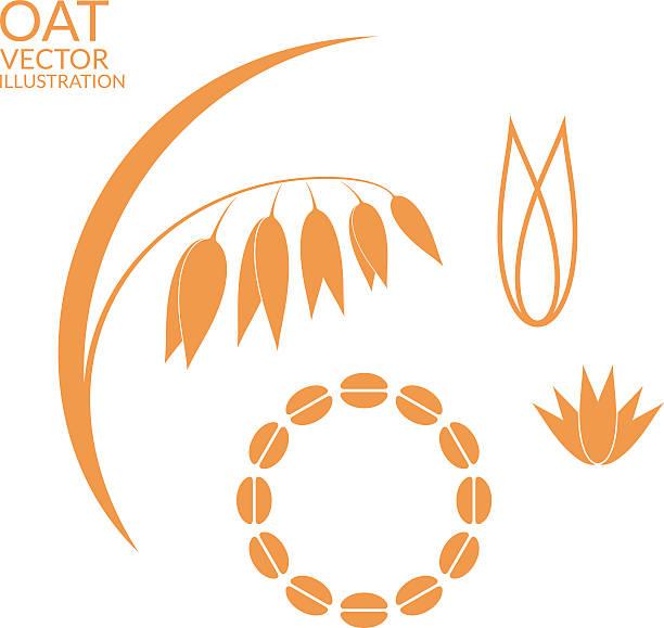 ilustrações de stock, clip art, desenhos animados e ícones de aveia. conjunto de - ilustrações de oats