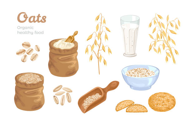 ilustrações de stock, clip art, desenhos animados e ícones de oats set. bag of oat flour, sack of grains, wooden scoop with cereals, golden ears of corn, oat milk and cookies. oat flakes and bowl with oatmeal. organic food vector illustration. cartoon flat style - aveia