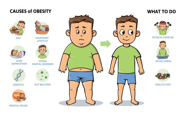ilustrações de stock, clip art, desenhos animados e ícones de obesity causes and prevention. young guy before and after diet and fitness. colorful infographic poster with text and character. flat vector illustration, horizontal. isolated on white background. - criança perdida