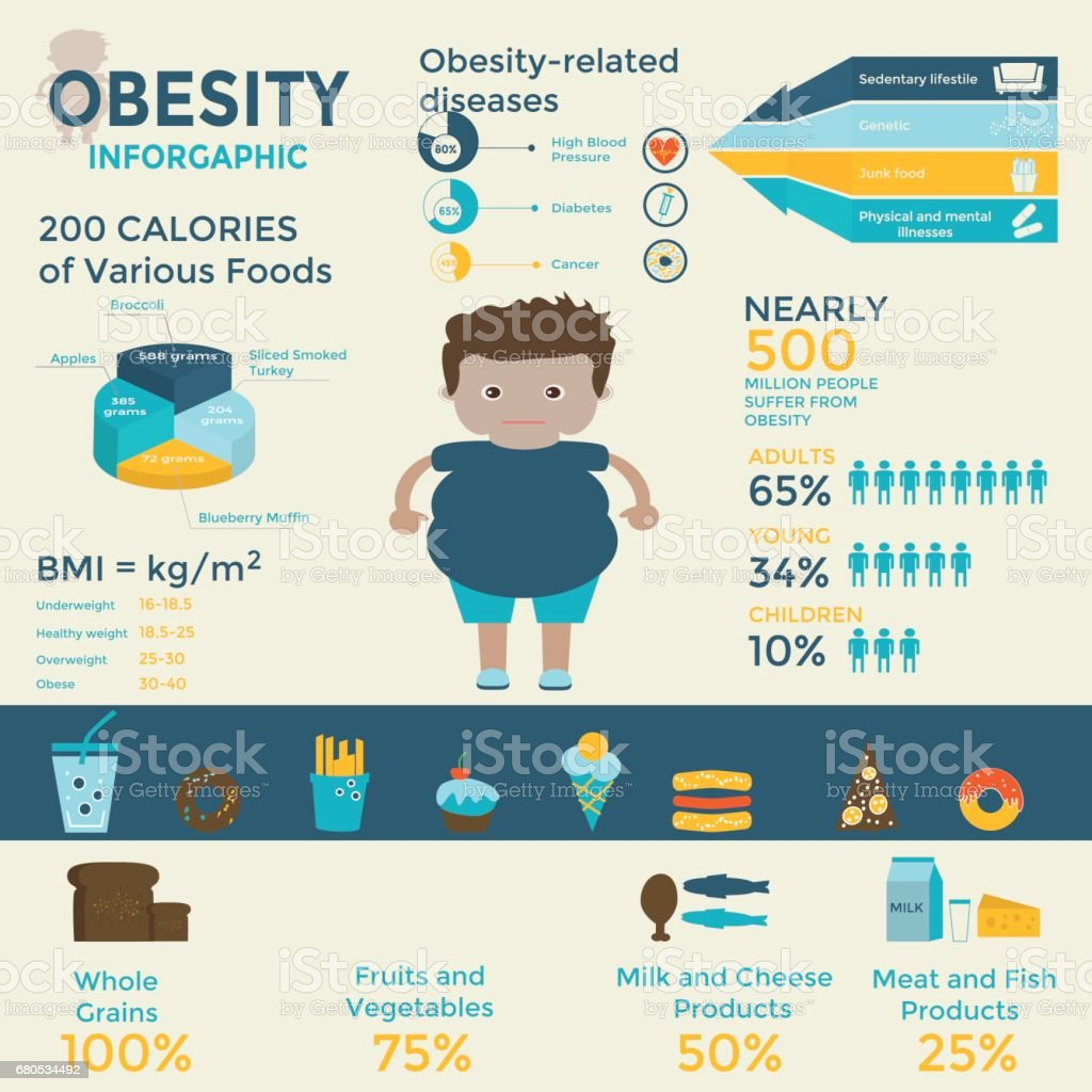 Obesity infographics template vector art illustration