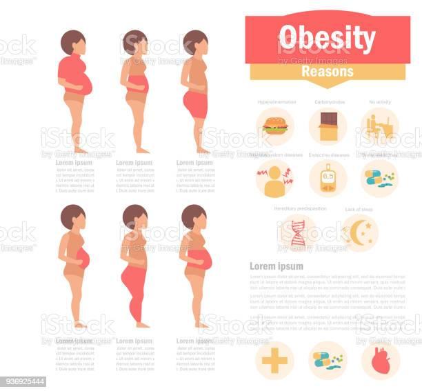 Obesity types and causes vector id936925444?b=1&k=6&m=936925444&s=612x612&h=qogmvxix5xaxp3kvywuexoanjsl76vzx2fi1mlfdyb0=