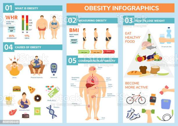 Obesity weight loss and fat people health problems infographic for vector id858599448?b=1&k=6&m=858599448&s=612x612&h=en3lyity rihfrgpy0qgpdtxlno61 pbeksyoexk0xm=