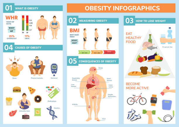 illustrazioni stock, clip art, cartoni animati e icone di tendenza di obesity weight loss and fat people health problems infographic healthy elements exercise for good health with food vector illustration - obesity