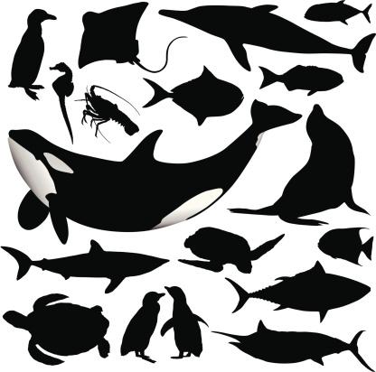 Ocean Animal Silhouettes