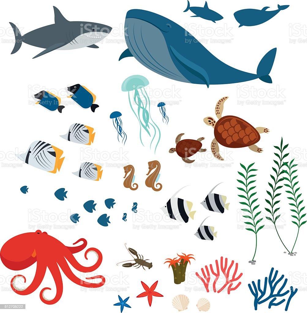 海の動物や魚 のイラスト素材 512705222 | istock